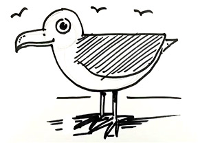 how to draw a seagull drawaseagullsmall